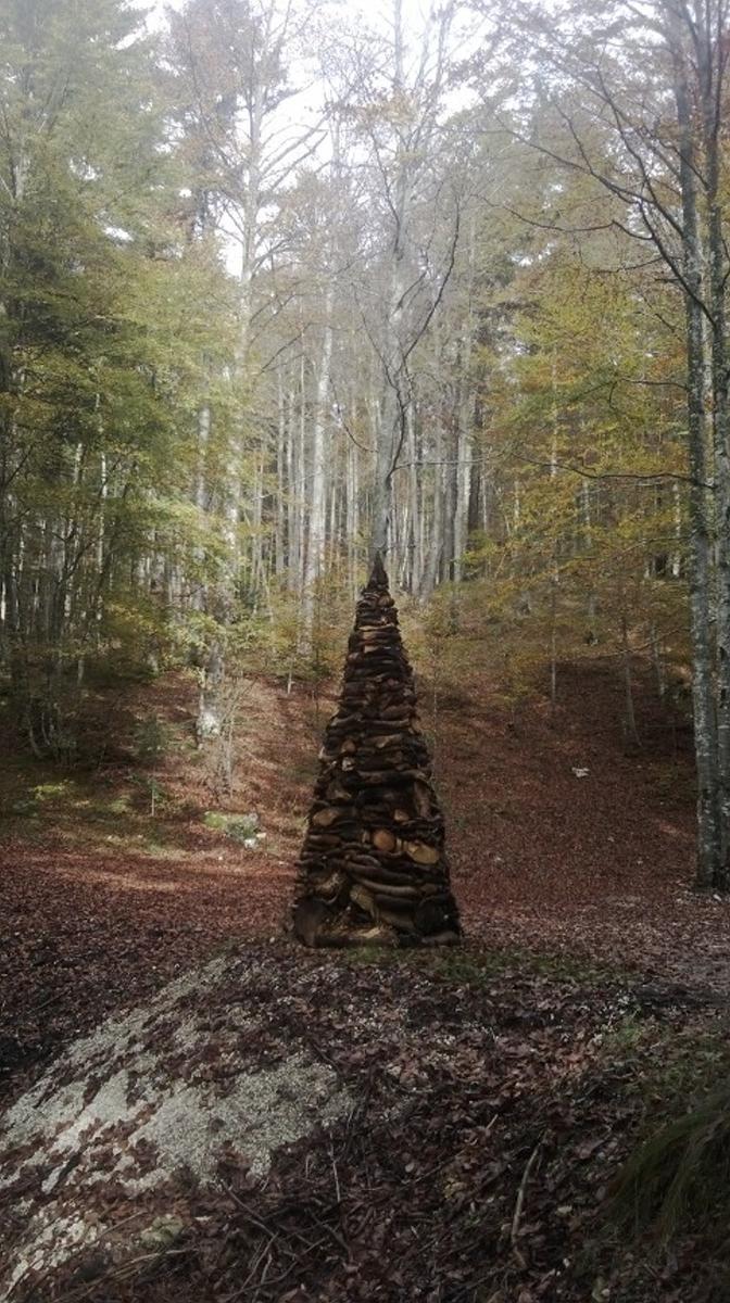 Radicati al cielo OPERA di Marco Nones Lavarone 2014 respito degli alberi