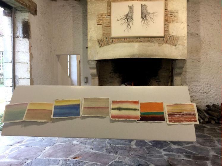 In alto Radici di Marco Nones in basso acquerelli di Alessandra Bruno