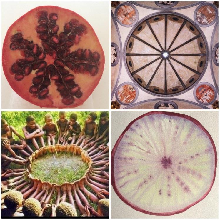 Alessandra Bruno sezioni botaniche p