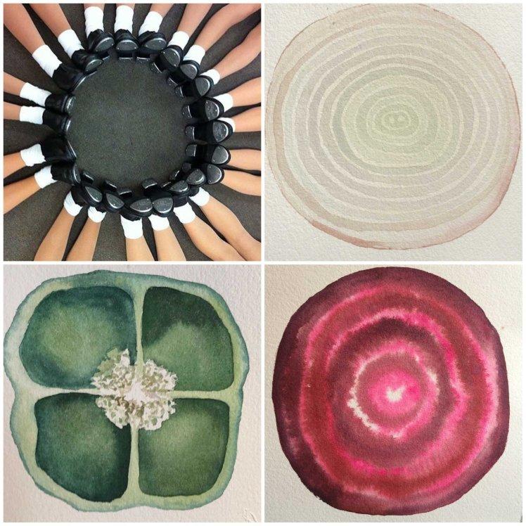 Sezioni botaniche di Alessandra Bruno mostra