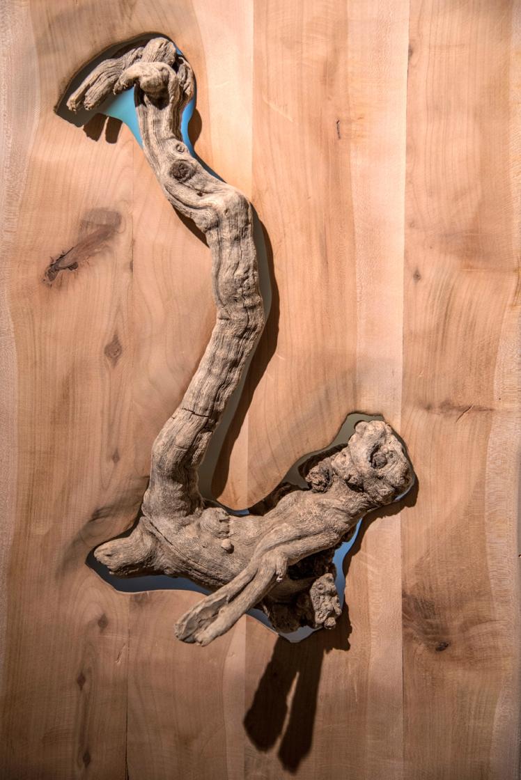 Marco Nones installazione Galleria Casa Dugnani 4 Foto Raul Zini