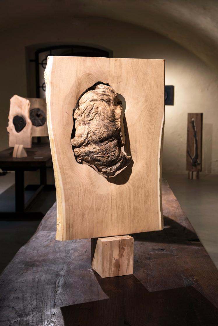 Marco Nones mostra Galleria Casa Dugnani 14 Foto Raul Zini