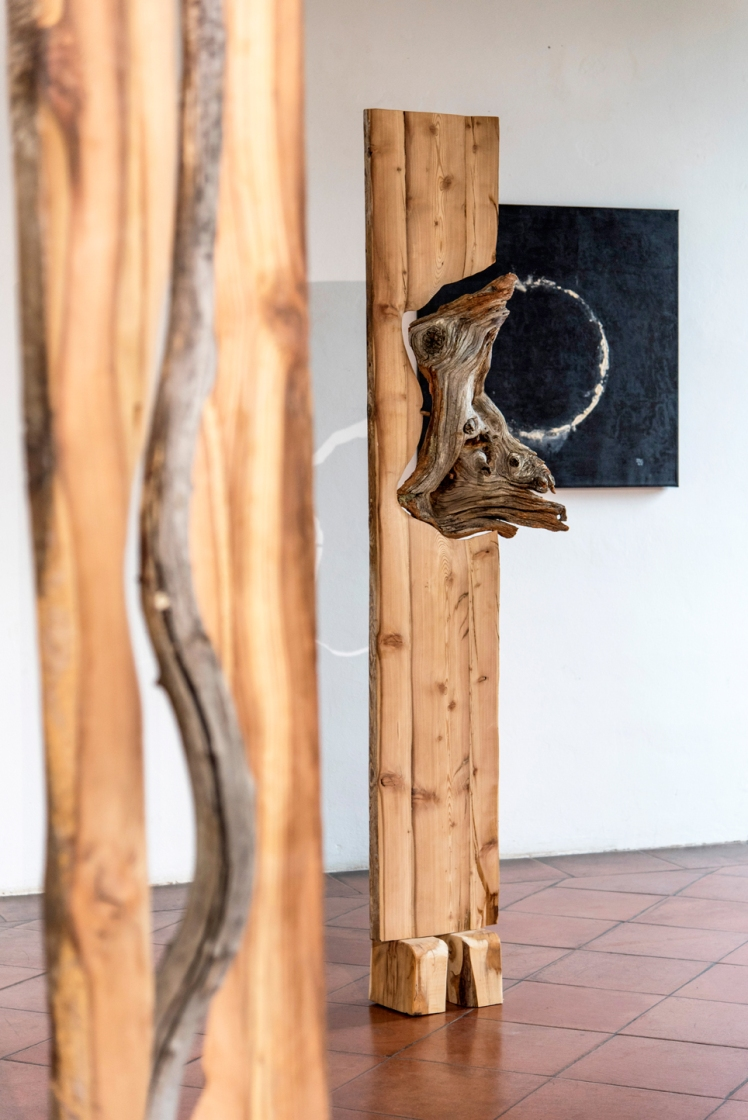 Marco Nones mostra Galleria Casa Dugnani 22 Foto Raul Zini