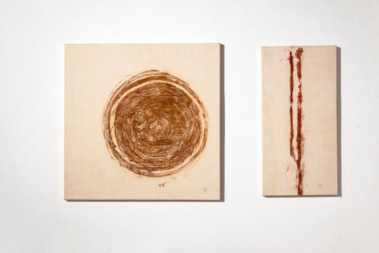 Marco Nones mostra Galleria Casa Dugnani ICE PAINTING Foto Raul Zini