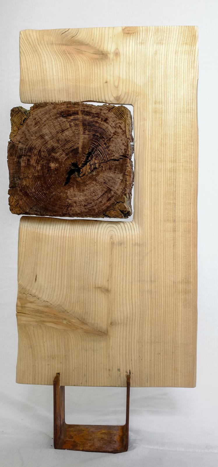 Il Libro del bosco di Marco Nones Foto di Eugenio Del Pero